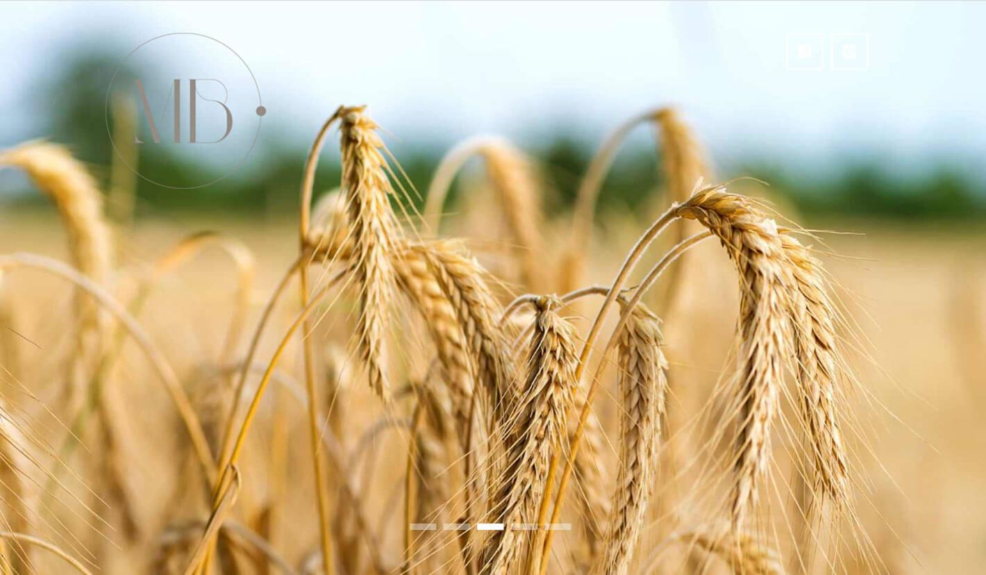 Abogados Agrario